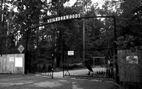 neighborwoods bw copy_PS